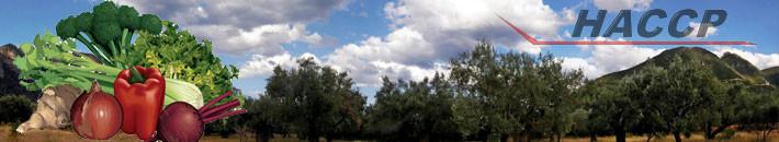Κηπευτικά Λεωνιδίου